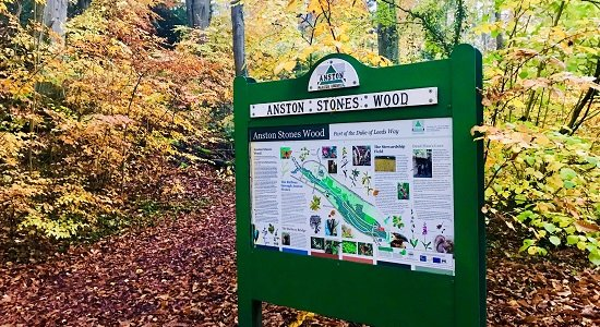 Anston Stones Wood - Information Board